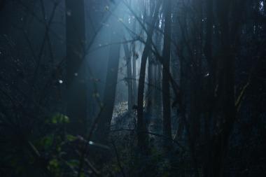 dark-1936954_1920
